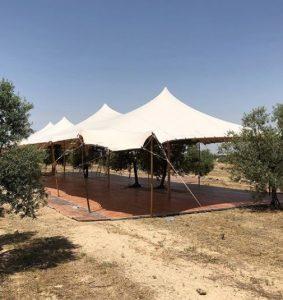 carpa beduina arboles integrados Top Tent
