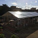 alquiler Pabellón transparente Top Tent