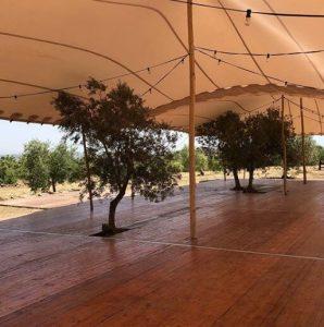 tarimas arboles integrados Top Tent carpa beduina